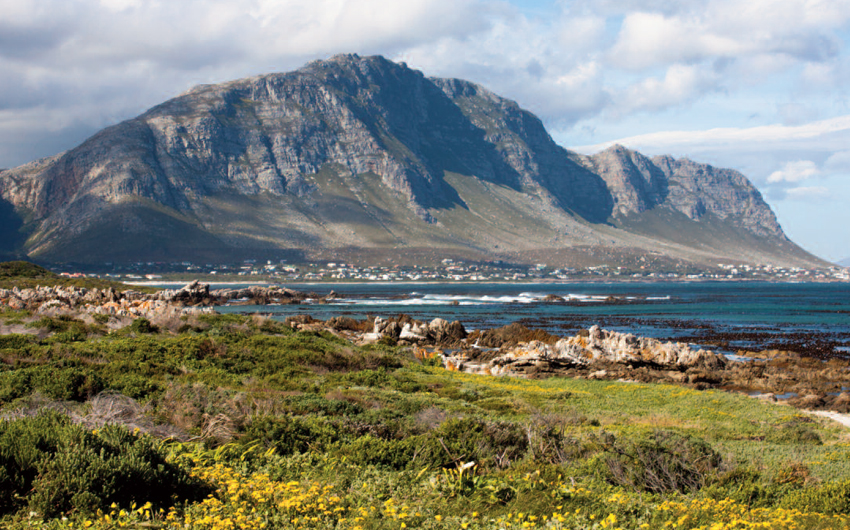 Coastline of Hermanus