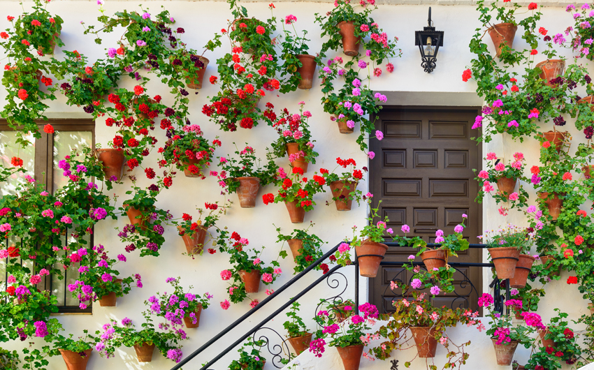 Typical decorated home in Cordoba