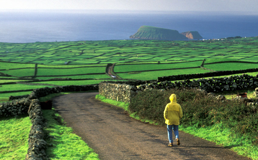 Down Hill with Lush Green Fields, Terceira