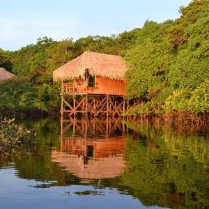 JUMA AMAZON LODGE in Amazon, Brazil