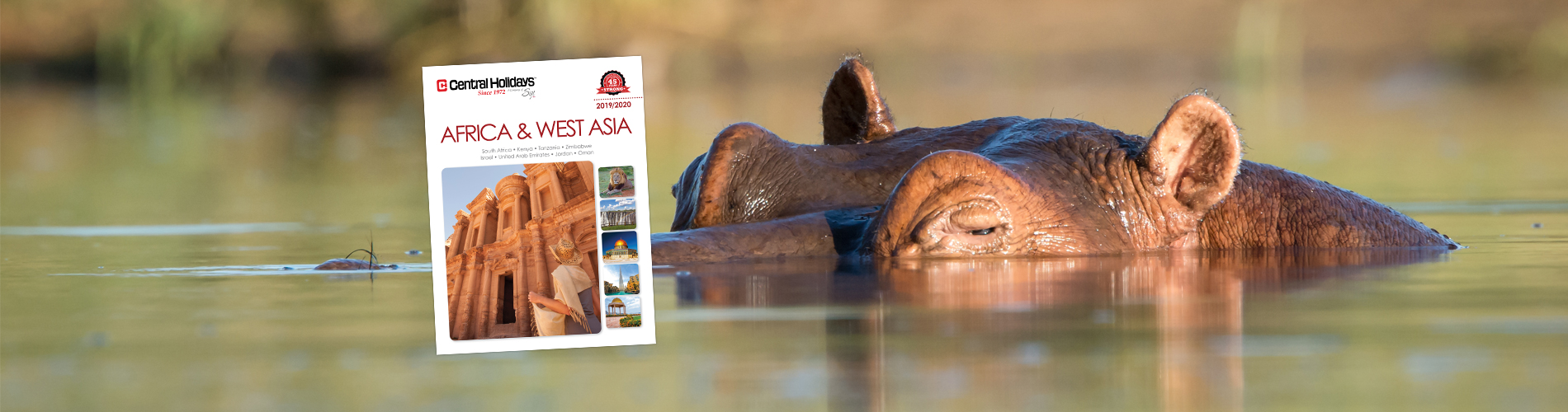 Our NEW 2019 Africa & West Asia brochure is available