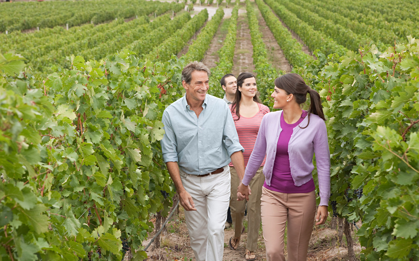 Walking through the vineyard in Mendoza