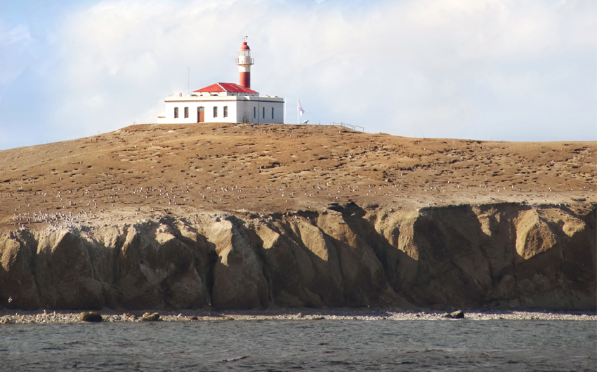 Lighthouse on Isla Magdelana, off the cost of Punta Arenas