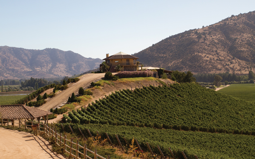 View from the Santa Cruz vineyard in Santa Cruz Valley